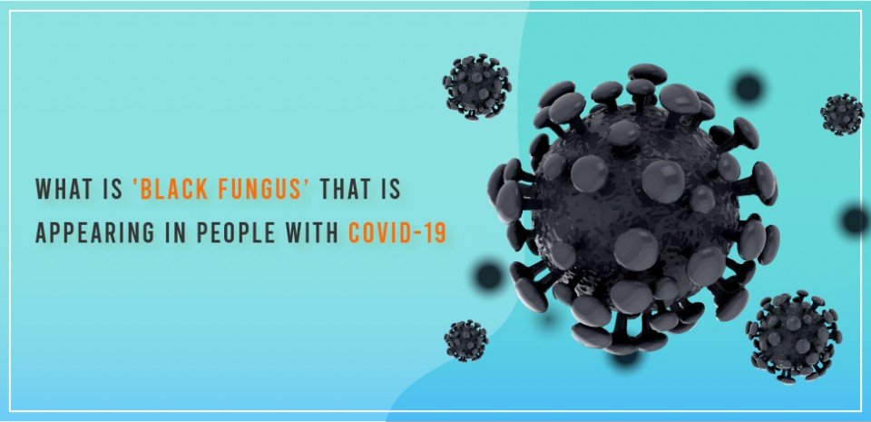 What is 'Black Fungus' that is appearing in people with covid-19