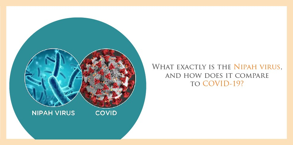 What exactly is the Nipah virus, and how does it compare to COVID-19?
